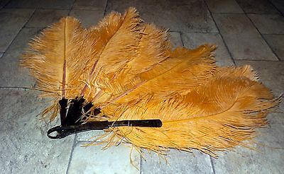 Lg. Antique Victorian Ostrich Feather Fan, Peach/Apricot Feathers, Brown Lucite