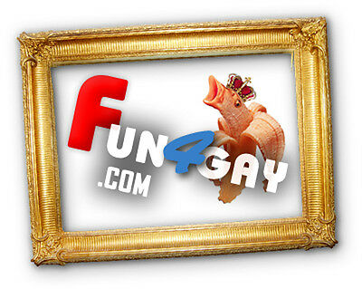 FUN4GAY.COM Domain for Sale - fOr gay's site (Ex:July 13, 2021)