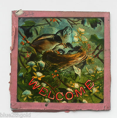 Antique Victorian Magic Lantern Slide Audience Welcome To Show Painted Birds