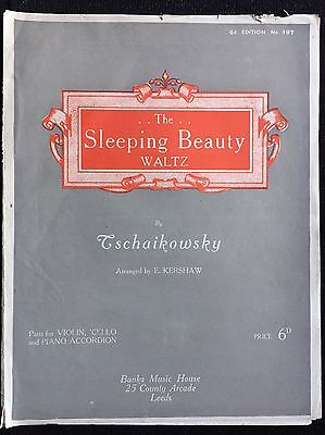 The Sleeping Beauty Waltz by Tschaikowsky Violin, Cello and Piano Accordion