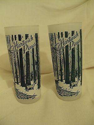 Set of 2~Vintage~Hartwick Pines Frosted Tumbler/Drinking Glasses~Michigan