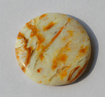 12 Cts Natural Petrified Palm Agate Designer Loose Cabochon 20X20X4 MM AC57