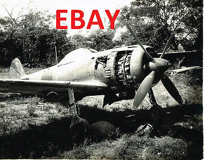 Wwii 8X10 Photograph Of Captured Japanese Fighter Aircraft On Saidor Look
