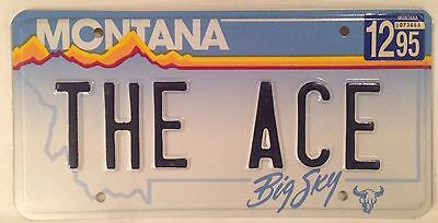 MT vanity THE ACE license plate Professional Expert Pro Driver Playing Card