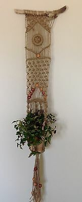 Macrame Wall Plant Hanger  'chunky 1'  Unique Gift Idea