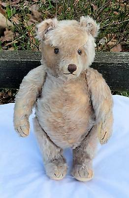 Large Very Old Antique Steiff Bear With Character,  Adorable 1950's