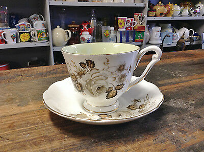 BRT Gorgeous Vintage Terra Nova Tea Cup & Saucer Duo Queen Anne China England