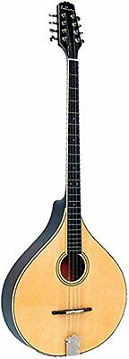 SEHR GUT: Ashbury AM-375 Irish Bouzouki