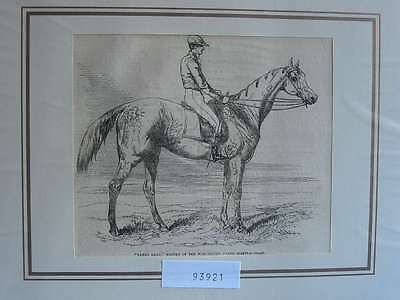 93921-Pferde-Horses-Reiten-Riding-Manchester Fanny-T Holzstich-Wood engraving