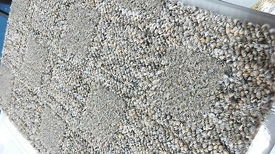 THICK Hardwearing Golden Grey Berber carpet remnant 6m x 4m *FREE DELIVERY*