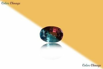 0.165 Ct Unique 100% Nr' Dancing Color Change Alexandrite Gemstone Aaa Oval !!!