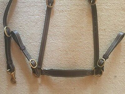 Brown Leather Breastplate