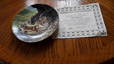 bobcat china wall plate with certificate