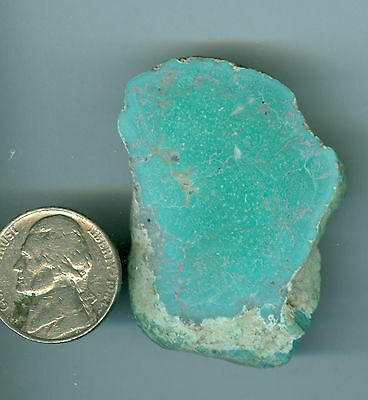 32 Grams Of Stabilized Fox Turquoise Blue Green Nevada Turquoise Rough