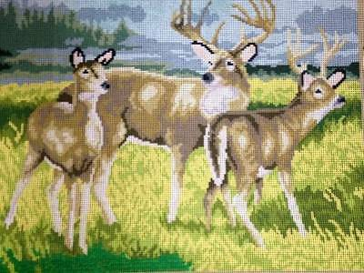 DMC Printed Tapestry Needlepoint Canvas The Deer Tapestry Country Field