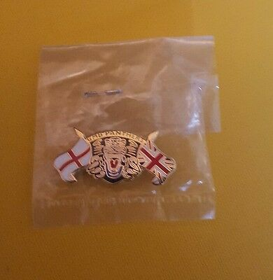 Nottingham Panthers ice hockey Pin Badge rare