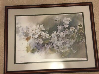 Limited edition signed numbered print by Zoltan Szabo hand signed framed!