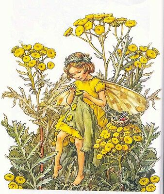 The Tansy Flower Fairy - Cross Stitch Chart - FREE POST