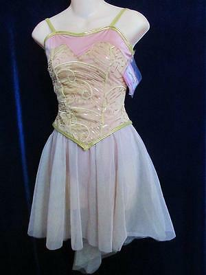 Classic Style Ballet 2 Piece Rose Gray Curtain Call Costume Lyrical ASM
