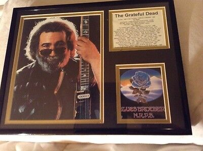 Jerry Garcia Photo Grateful Dead History Framed & Matted For Rock Collector