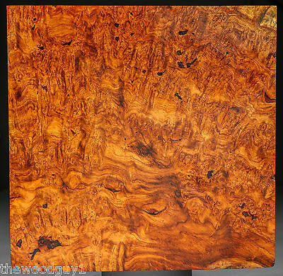 x1077 - Large Beautiful AFZELIA BURL Block - Air Dried for 20 years