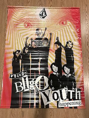 """Large Volcom Vinyl Banner Poster Wall Art """"BIG YOUTH HAPPENING"""" Poster 36""""X47"""""""