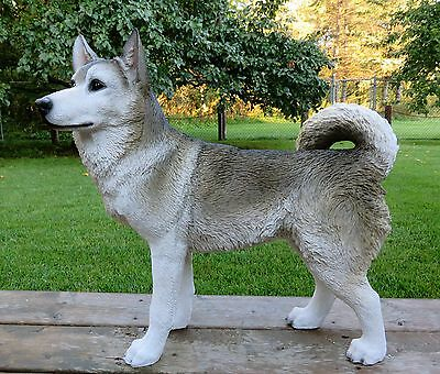 SIBERIAN HUSKY DOG FIGURINE resin animal Statue PET DECORATION PREORDER ONLY NEW