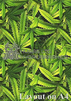 CUSTOM PRINTED HYDOGRAPHICS HYDRO DIPPING FILM STYLE No102 cannabis weed marijua