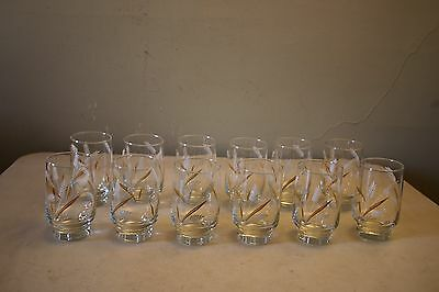 Lot of 12 Vintage Libbey White and Gold Wheat Drinking Glasses