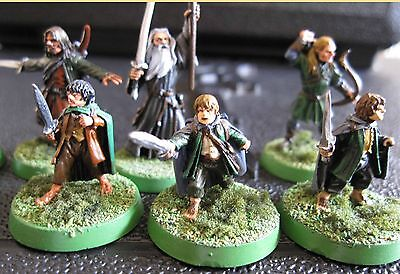 Games Workshop Lord of the Rings the Fellowship of the Ring fully painted