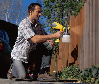 Electric Paint Sprayer Gun for Wood, Metal Paints Fence Decking Furniture WAGNER