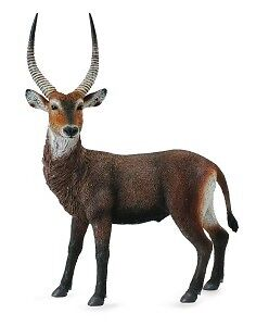 Waterbuck by CollectA - 88562