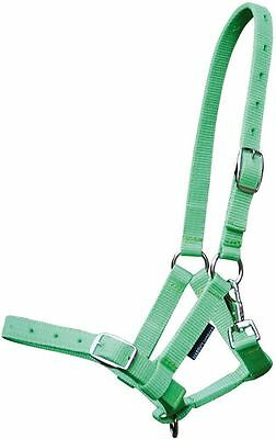Harry's Horse Foal Halter - Lime Harry's Horse