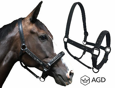 'AGD Black Knight' padded leather halter, black fittings & crystals. COB SIZE.