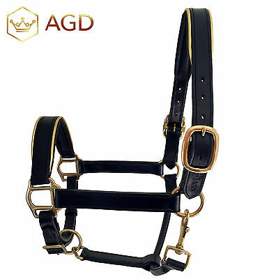 'AGD Goldline' black padded leather halter, brass fittings&gold piping.PONY size