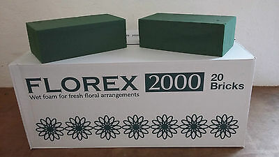 Oasis Type Economy Floral Foam Bricks X 10 Floristry Weddings Funeral