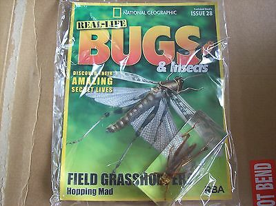 National Geographic Real-life Bugs & Insects magazine Issue 28