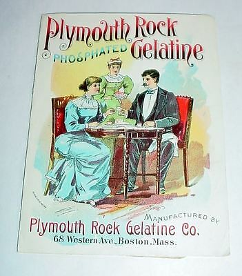 2 Plymouth Rock Phosphated Gelatine Victorian Ad Flyers -- Richly Illustrated