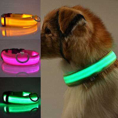 Adjuatable LED Dog Cat Pet Luminous Collar Night Safety Bright Flashing Necklace
