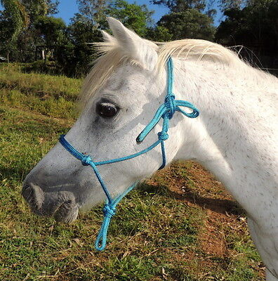 TEAL,blue/grn Quality,balanced Australian made rope halter,mini/pony/cob/full/XL