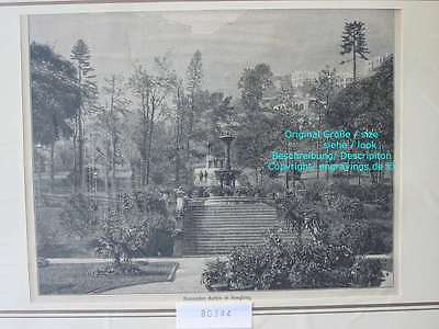 80344-China-Botanischer Garten in Hongkong-T Holzstich-Wood engraving