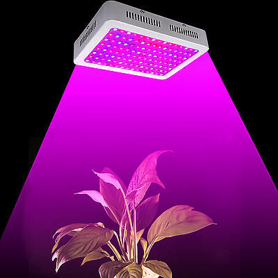 1000W LED Grow Light Panel Full Spectrum for Medical Plants Veg Bloom Indoor