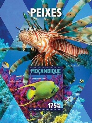 Z08 IMPERFORATED MOZ16107b MOZAMBIQUE 2016 Fishes MNH