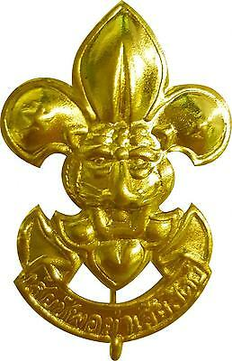 Thai Boy Scout Mark Pin Good Collectible Vintage Style