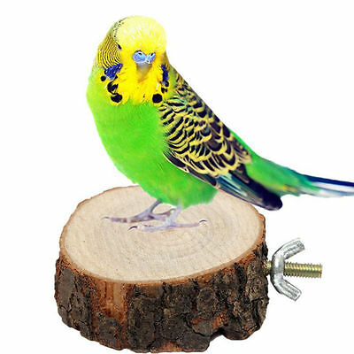 New Round Wooden Coin Parrot Bird Cage Stand Platform Budgie Hanging Toy