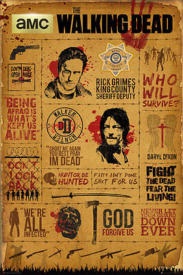 The Walking Dead Infographic  91.5 X 61Cm Maxi Poster New Official Merchandise
