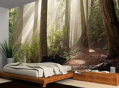 Nature Forest Sunlight Wall Mural Photo Wallpaper Image Decor Giant Paper Poster