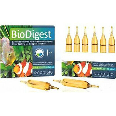 BIO DIGEST.bacteria living for el filtering of the acuario.1 ampoule sale A BULK
