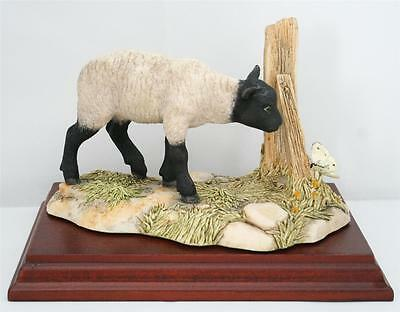 Border Fine Arts Black Faced Lamb And Butterfly Model Fe14B Ayres