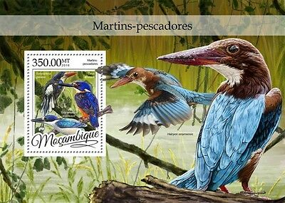 Z08 IMPERFORATED MOZ16312b MOZAMBIQUE 2016 Kingfishers MNH